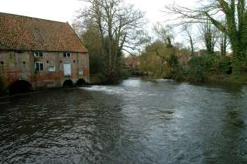 The cut leading to the staithe November 2002