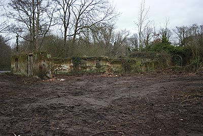 Site cleared around remains of watermill 13th January 2008