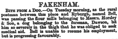 Norfolk News - 6th July 1889