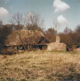 Mill and outhouse in 1977