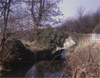 The headrace April 1968