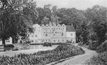 East Norfolk Roller Mills c.1900