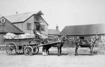 Woods, Sadd, Moore & Co's horse waggon c.1905